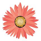flowerorange.png